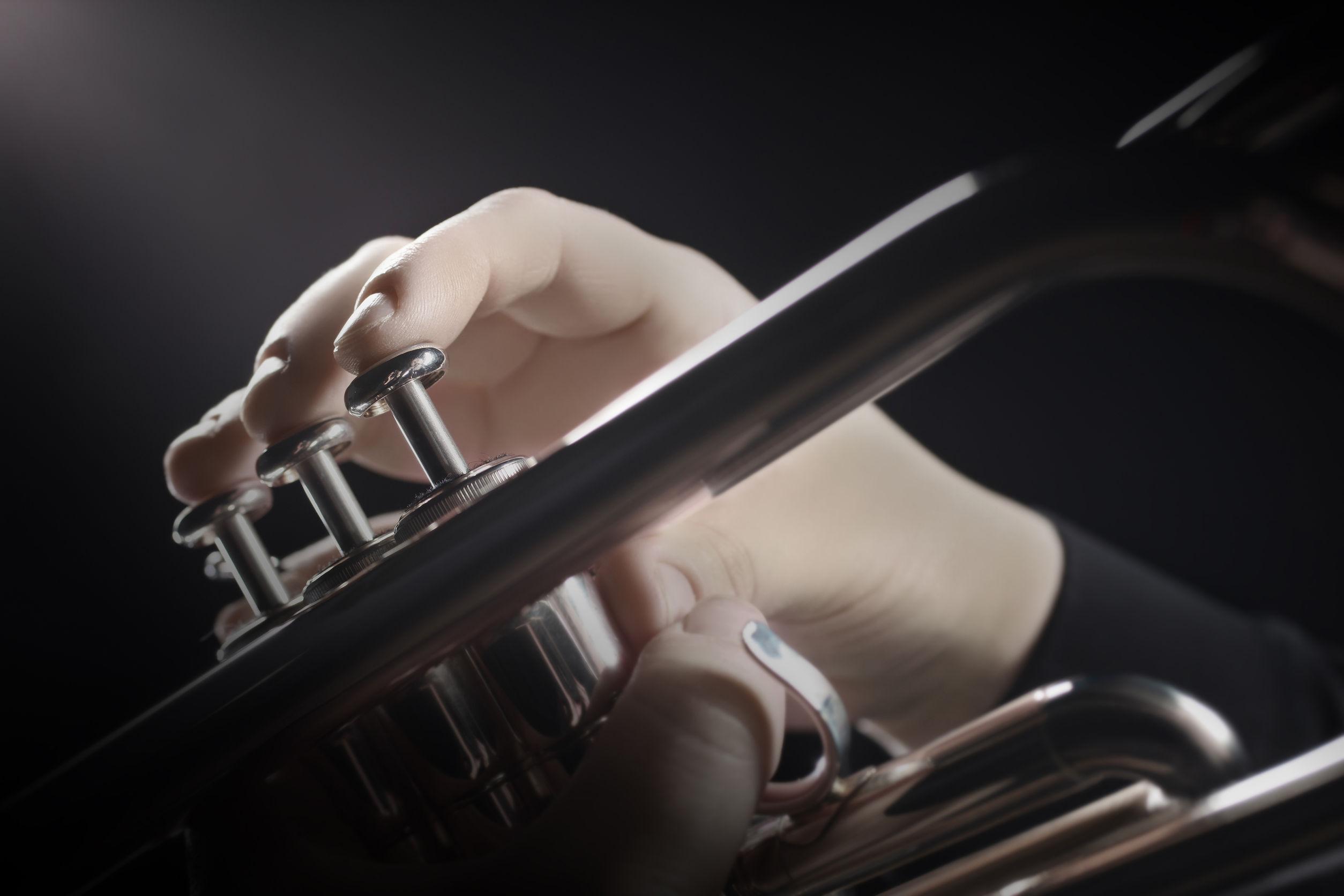Blaas instrument