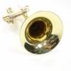 B&S Bb trompet 162594-13